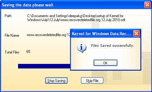 Picture8 Kernel for Windows Data Recovery Review