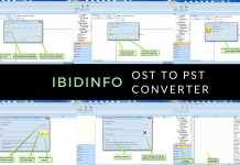 IbidInfo OST to PST Converter