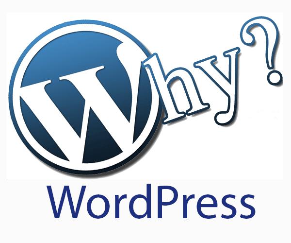 Take Control of Your Free WordPress Site